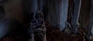 Lucky in 1996 film