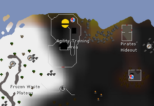 Wildy agility course map