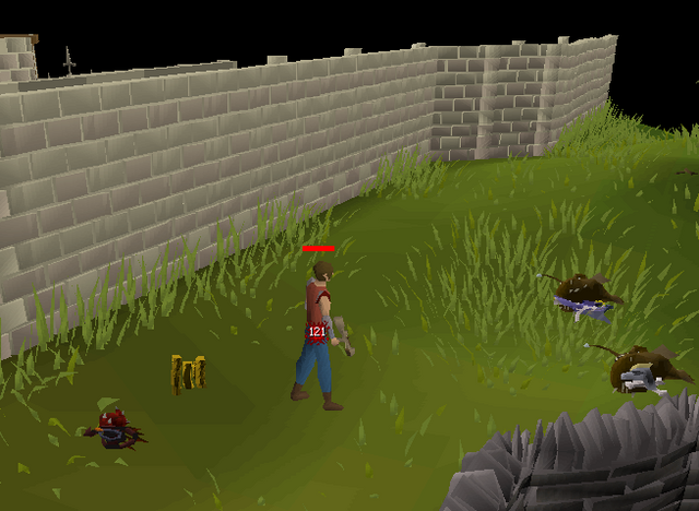 File:World 666 outside Falador.png