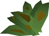 Grimy irit leaf detail