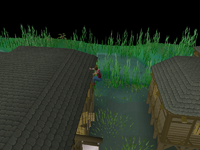 Canifis Agility Course 4