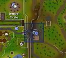 Doric's Quest/Quick guide