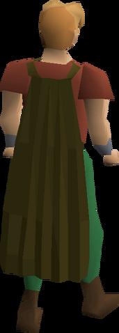 File:Fremennik brown cloak equipped.png