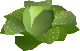 File:Magic cabbage.png