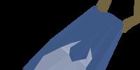 Team-27 cape
