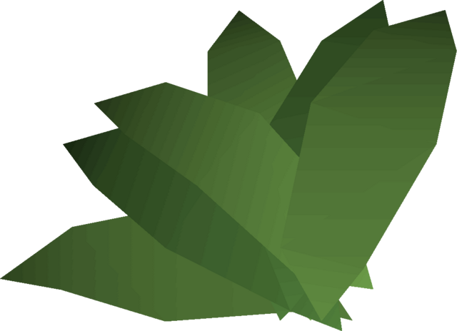 File:Irit leaf detail.png