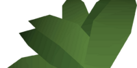 Irit leaf
