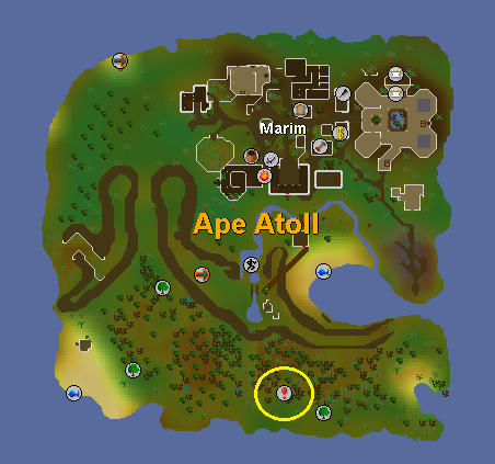 File:Ape Atoll Dungeon Location.png