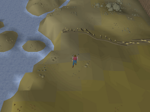 Hot cold clue - outside Rellekka fence