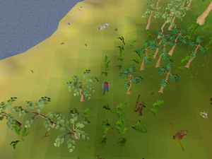 Hot cold clue - West of Brimhaven