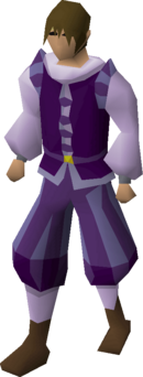 Purple elegant clothing (male) equipped