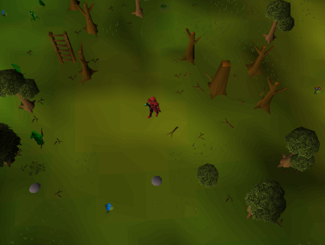 File:Hot cold clue - Southwest Tree Gnome Stronghold.png