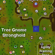 Elder Gnome child location