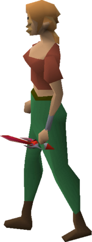 File:Dragon defender equipped.png
