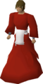 Elder chaos druid robes equipped v1.png