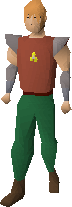 Armadyl pendant equipped