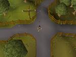 Emote clue - dance draynor crossroads