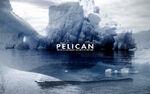 Pelican fire