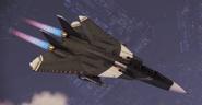 "F-14D ""Schnee"" Skin Flyby"