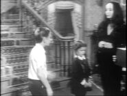 05.The.Addams.Family.Tree 074