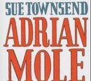 Adrian Mole The Cappucino Years