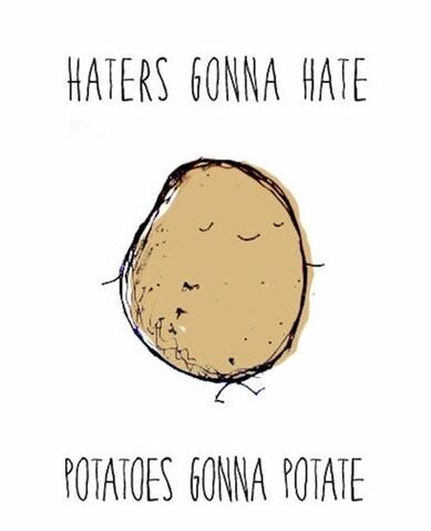 File:Haters-gonna-hate-potatoes-gonna-potate.jpg