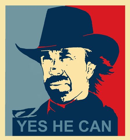 File:Yes he can chuck norris by zoking16.jpg