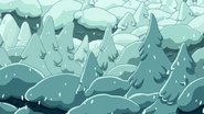 S7e15 trees covered in snow