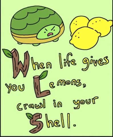 File:When life gives you lemons, crawl in your shell.jpg