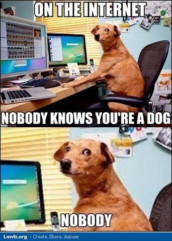 File:On-the-internet-nobody-knows-youre-a-dog-meme.jpg