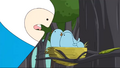 S2e10 Finn feeding birds.png