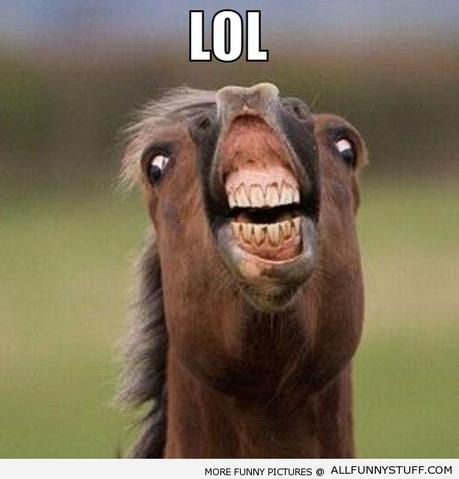 File:LOLHORSE.png