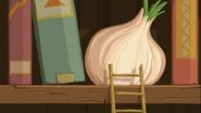Onion on a shelve