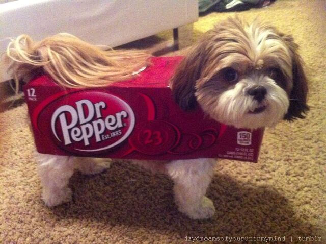 File:Dr pepper costume.jpg