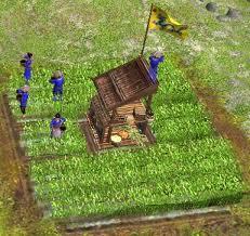 Archivo:Rice paddy.jpg