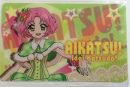 Sakura Fan
