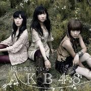604px-news large AKB48 23rd shokaiB