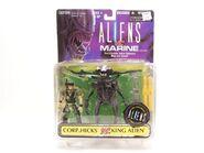 Aliens vs arins hicks