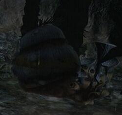 Felucian Snail