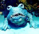 Frog-Dog