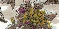 Lahdia Plant