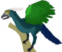 Archaeopteryx lithographica coloured