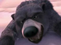 File:A bear.jpg