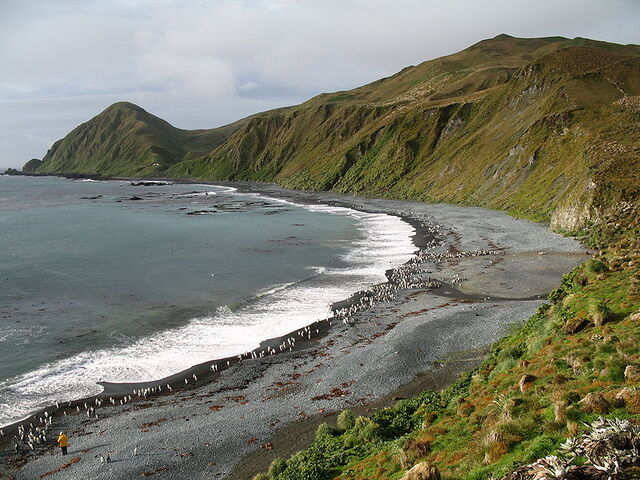 File:800px-MacquarieIsland7.jpg