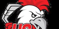 Czechoslovak Hockey League (WFAC)