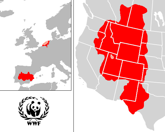 File:WWF PROJECTS.png
