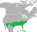 Confederate States of America (Victory at Gettysburg)