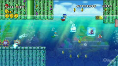 New Super Mario Bros Revolution