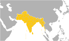 Hindustan (TBYA)