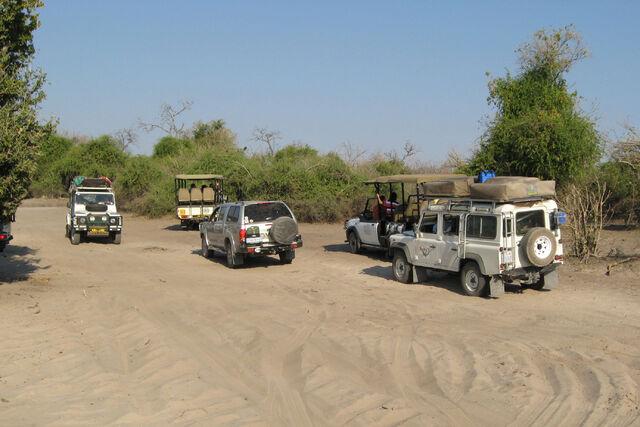 File:Chobe National Park Tourists.jpg